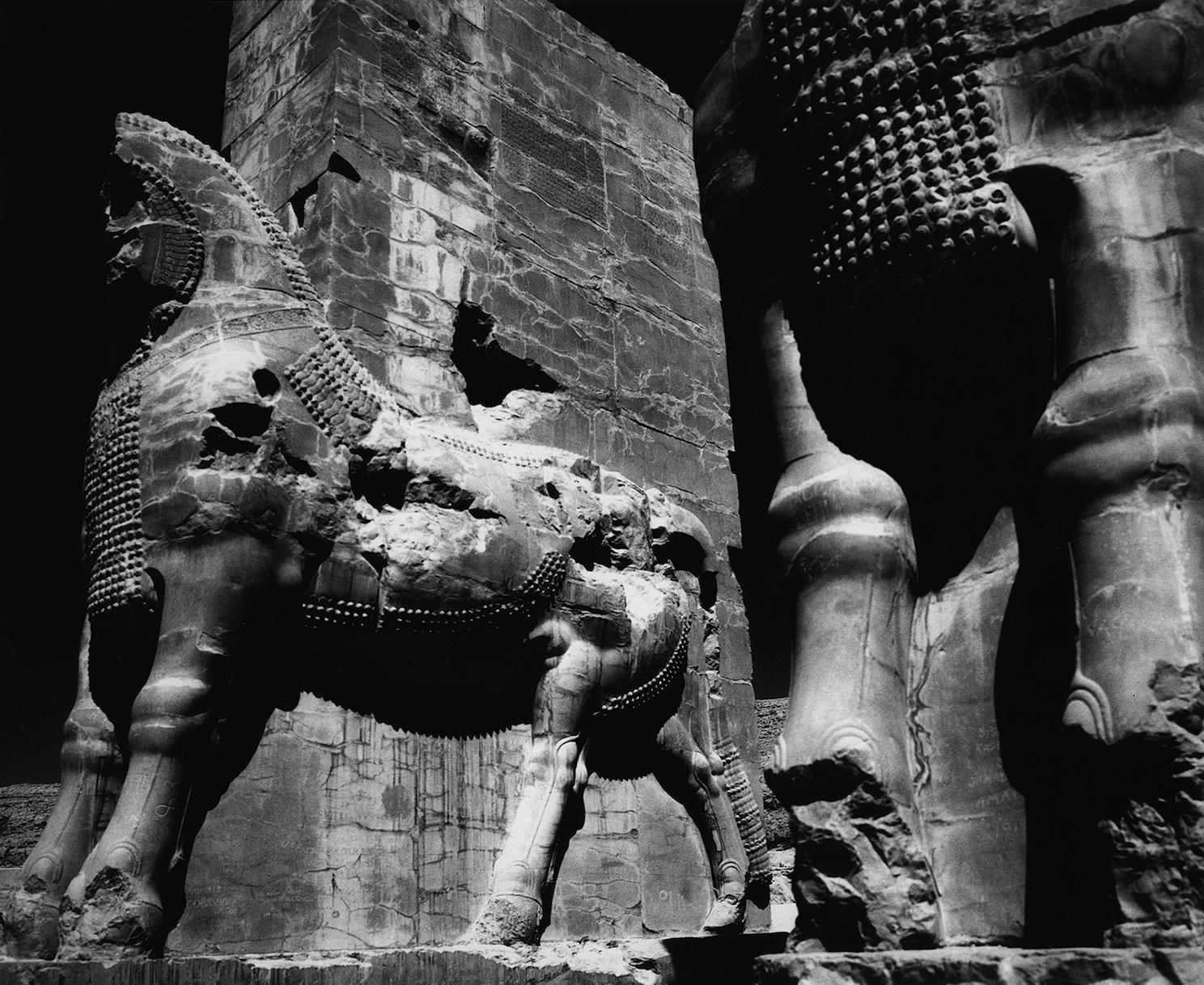 Stone Bulls, Persepolis