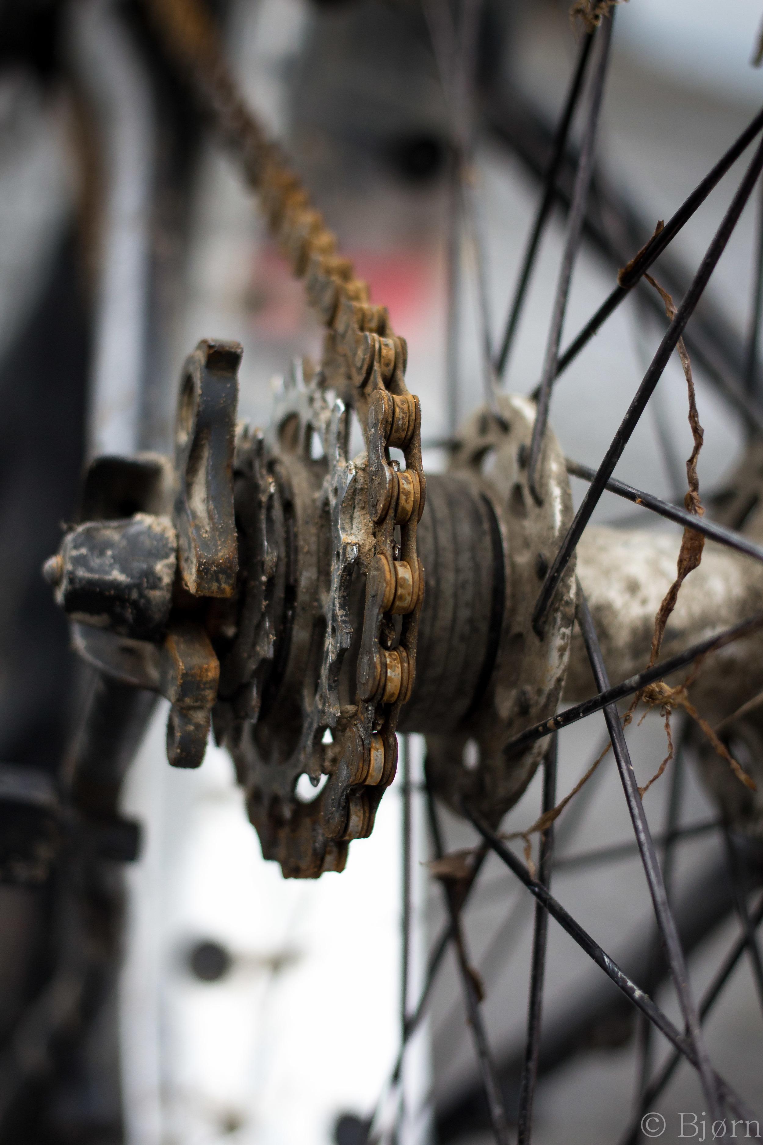 Packed Bike-3.jpg
