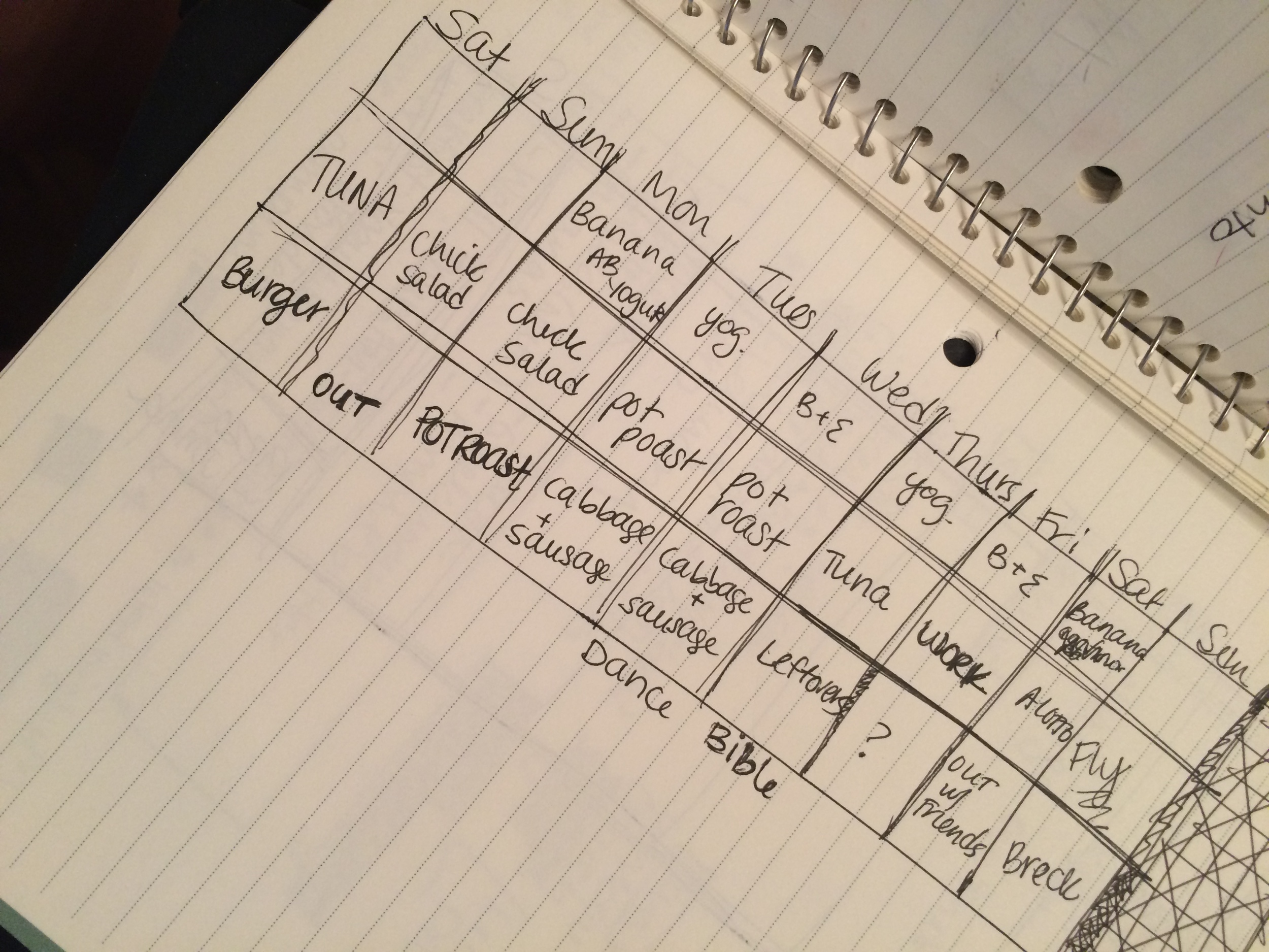 simple grid - no workouts and full meals not listed