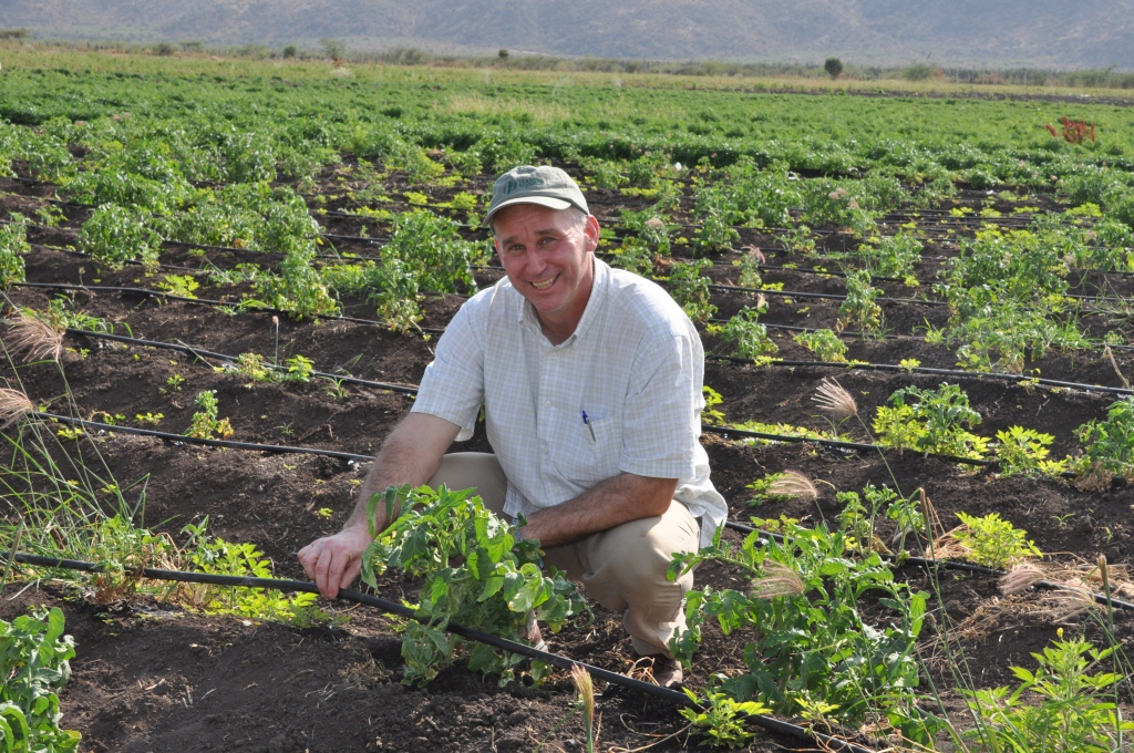 Doug Campbell inspects drip irrigation and crops at the Clarke Farm