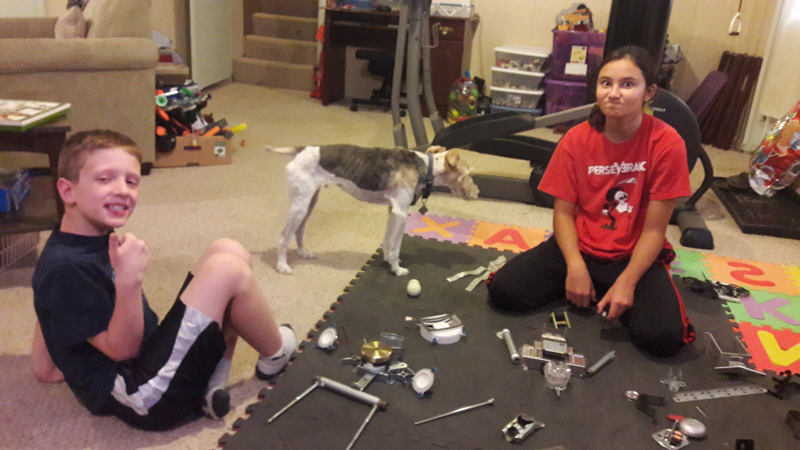 The dog was not much help at robot building.