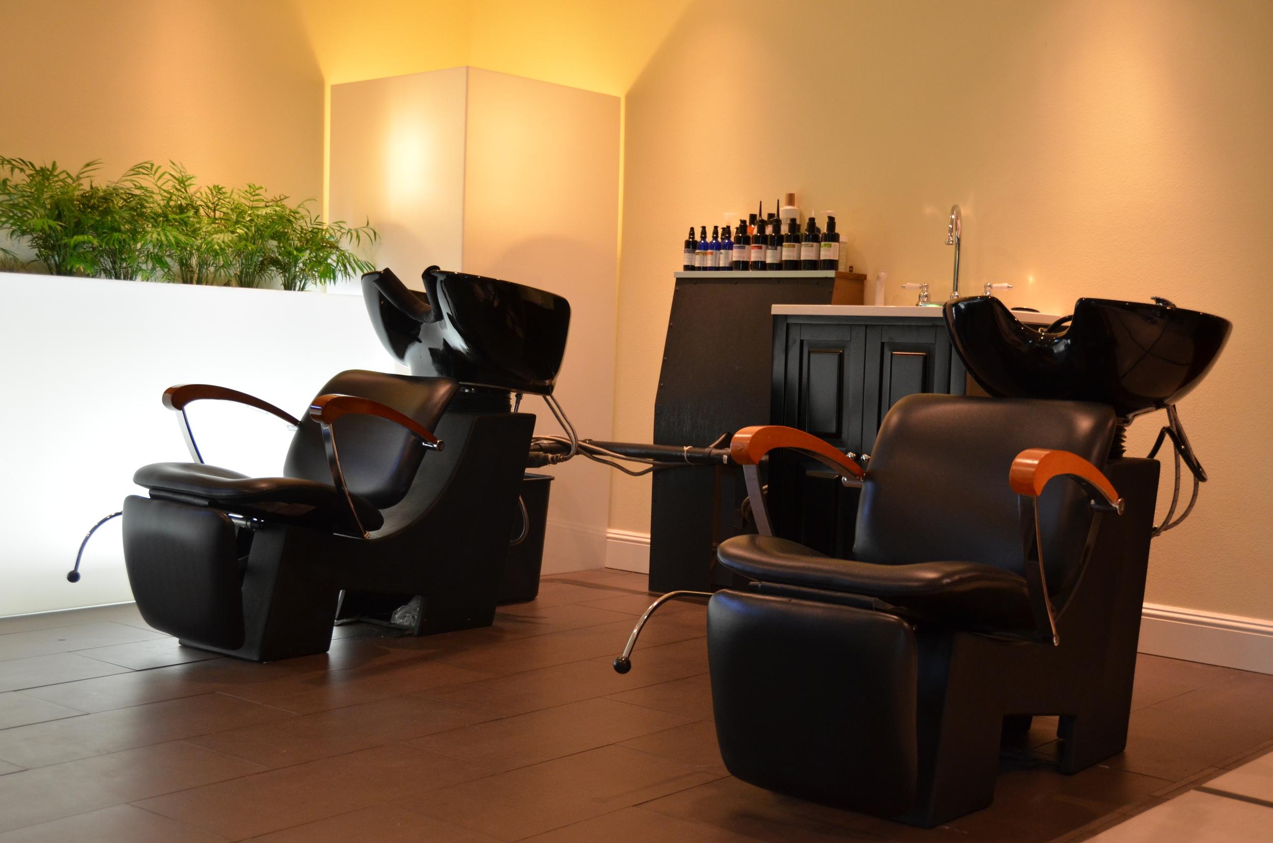 salon pictures for Craigslist 002.JPG