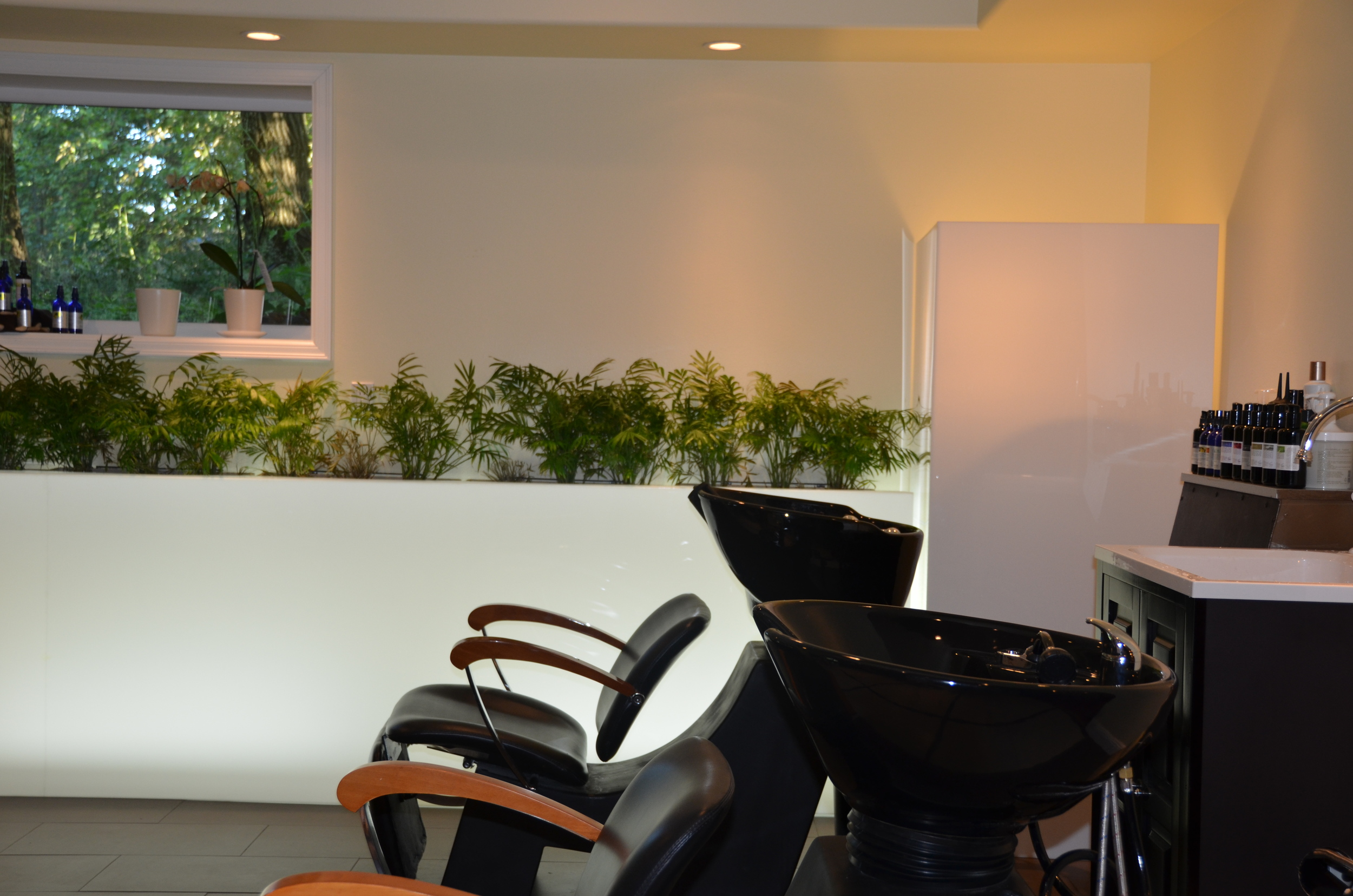 salon pictures for Craigslist 034.JPG