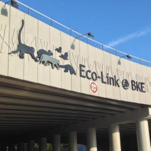 Eco-Link @ BKE