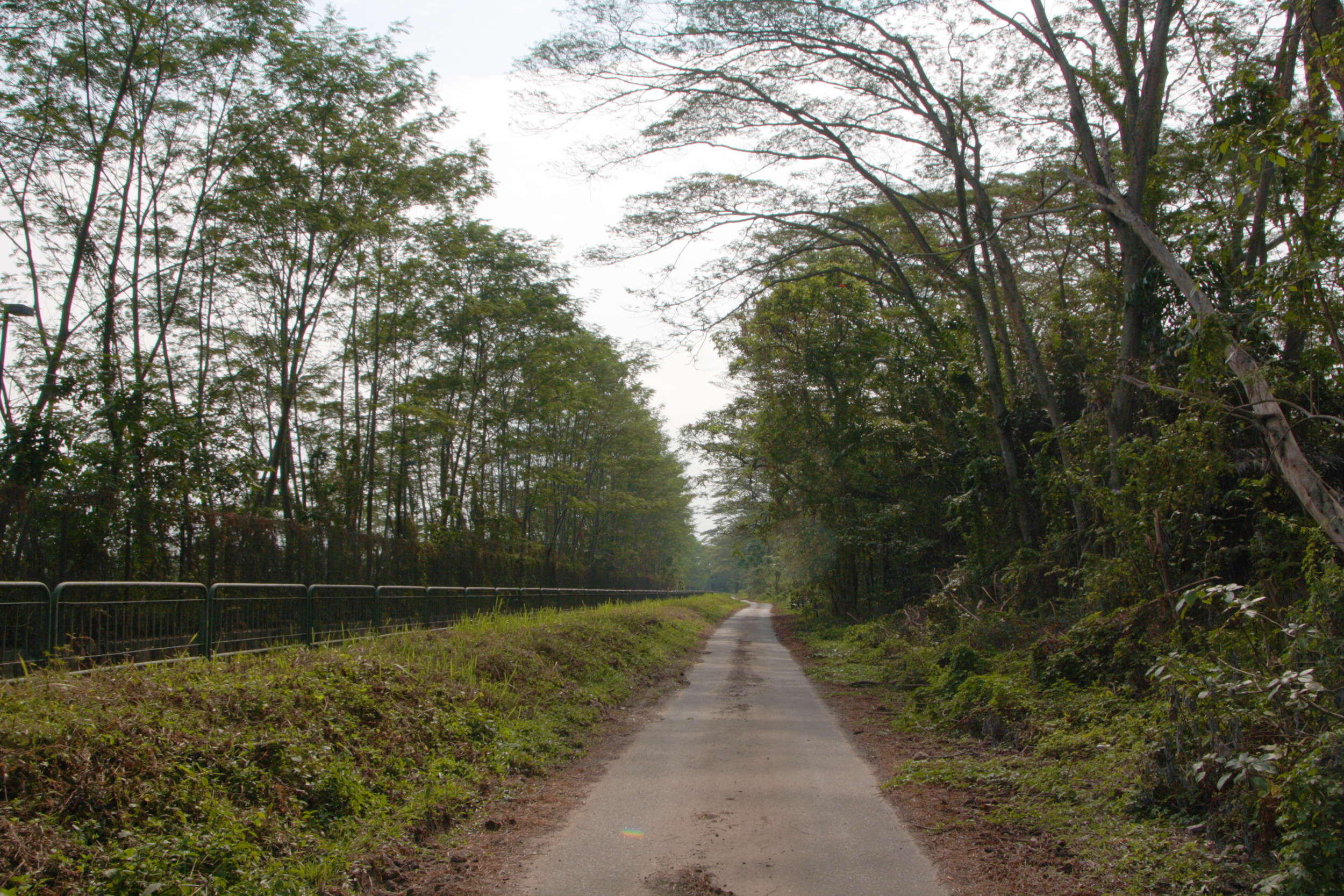Neo Tiew Lane 2 - Kranji Marshes