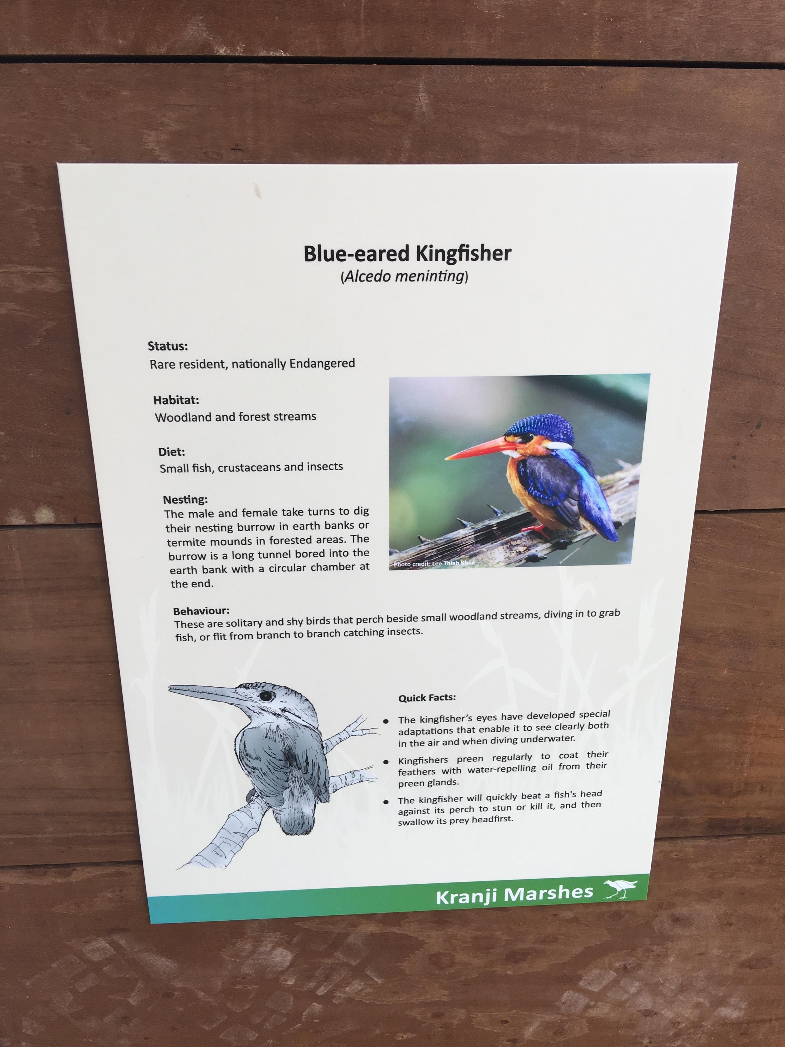 Kranji Marshes Signage Stephen Caffyn Landscape Design