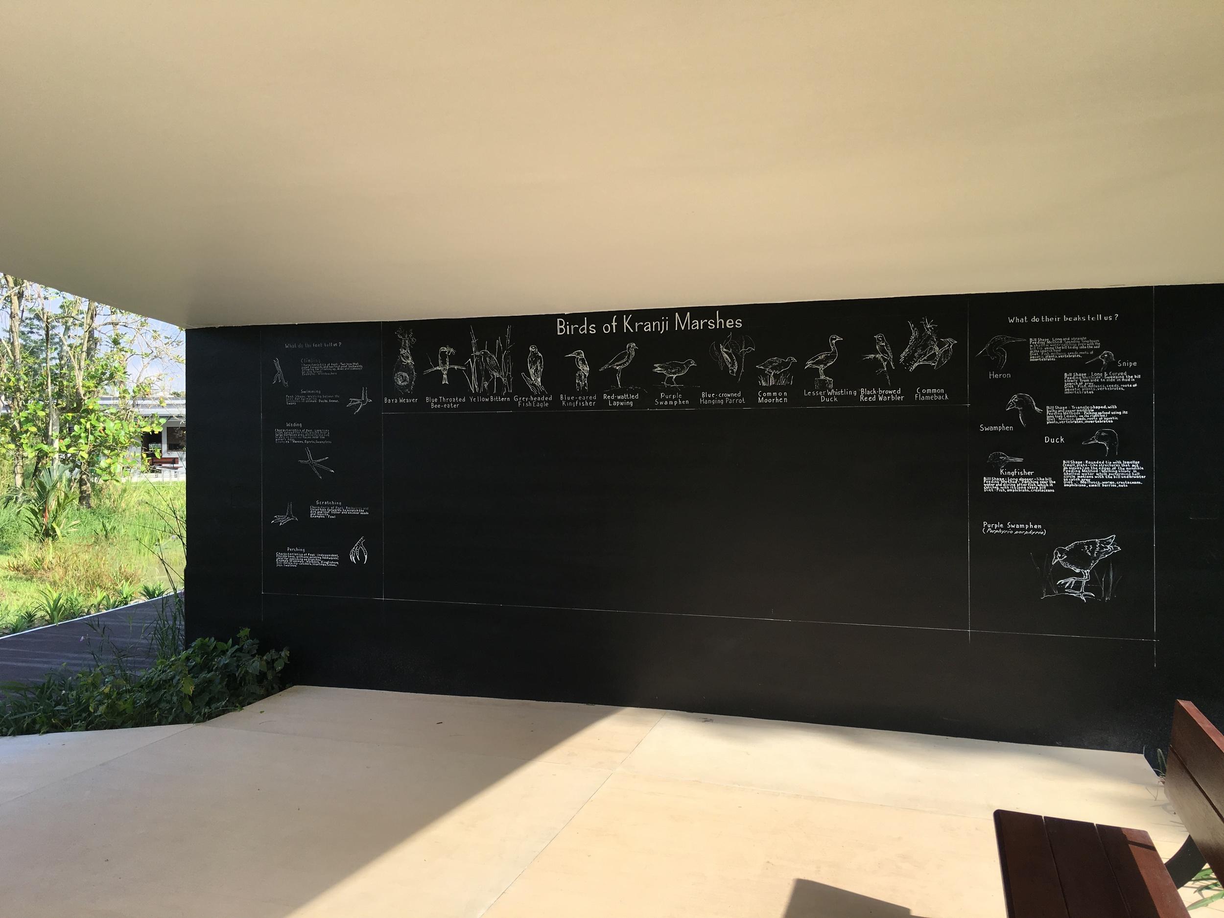 Classroom blackboard at Kranji Gate with Bird illustrations