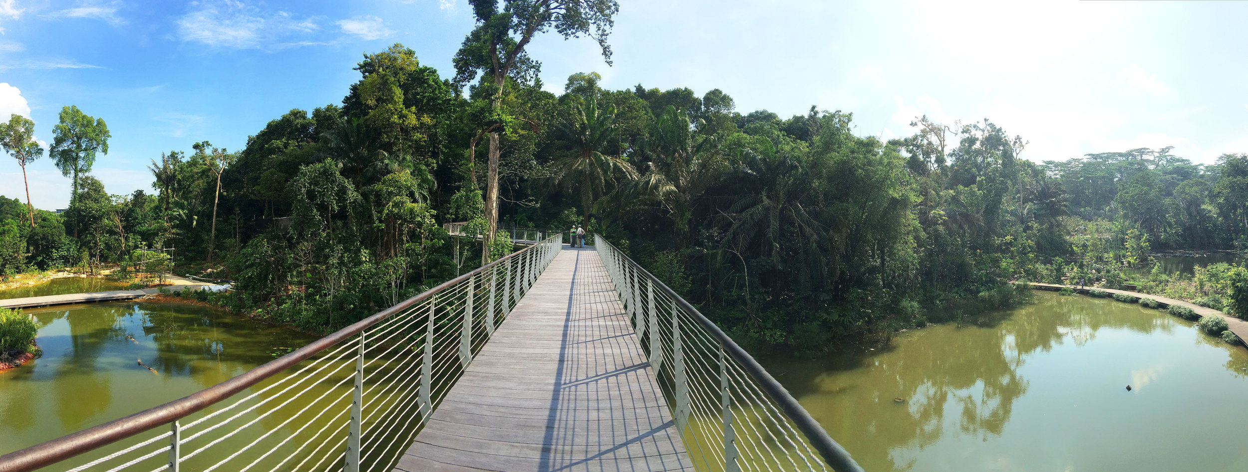 Panoramic view on Wetlands Elevated Boardwalk. Photo by SCLD