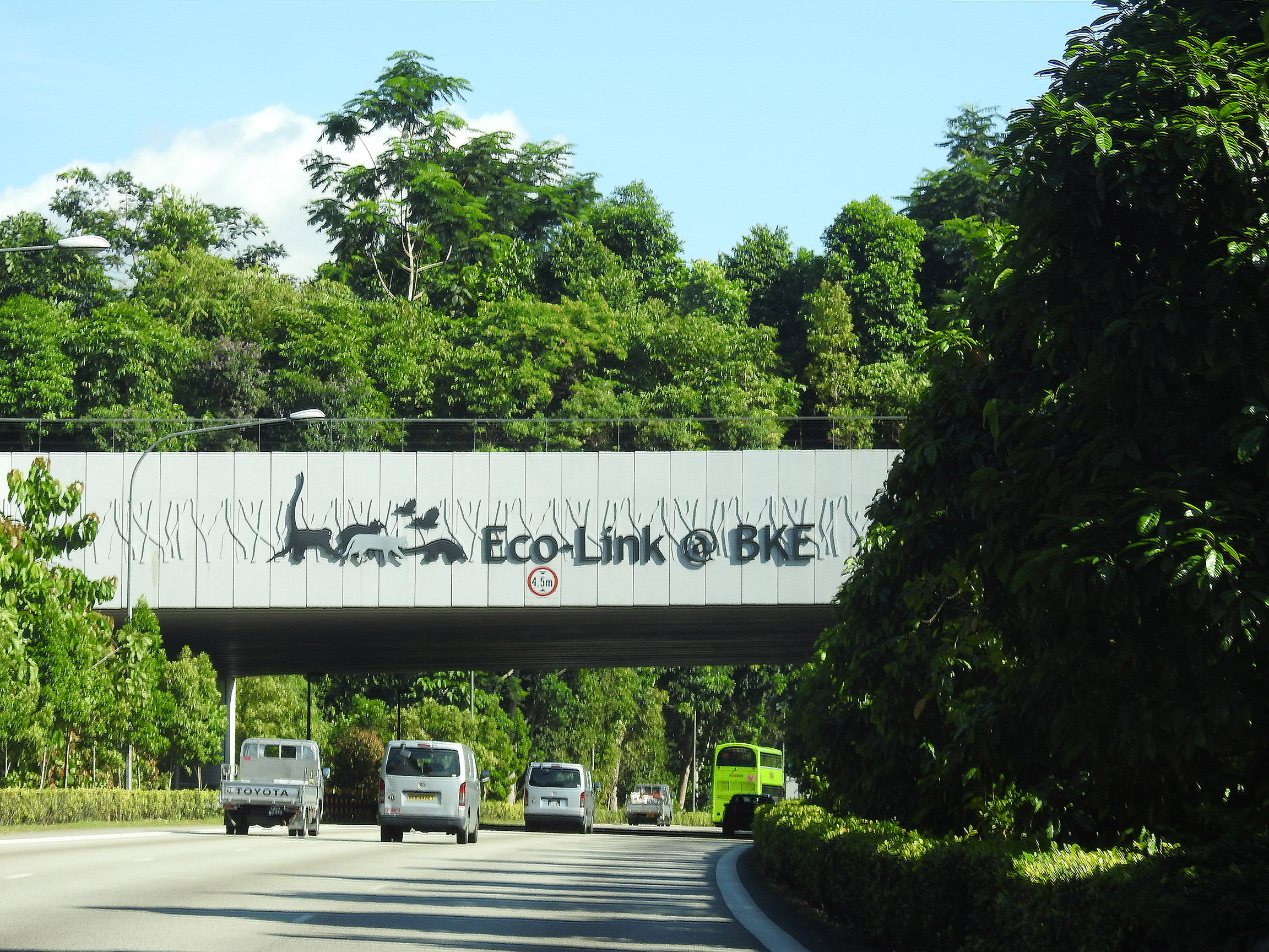 The Eco-Link@BKE seen here with large trees in July 2017.