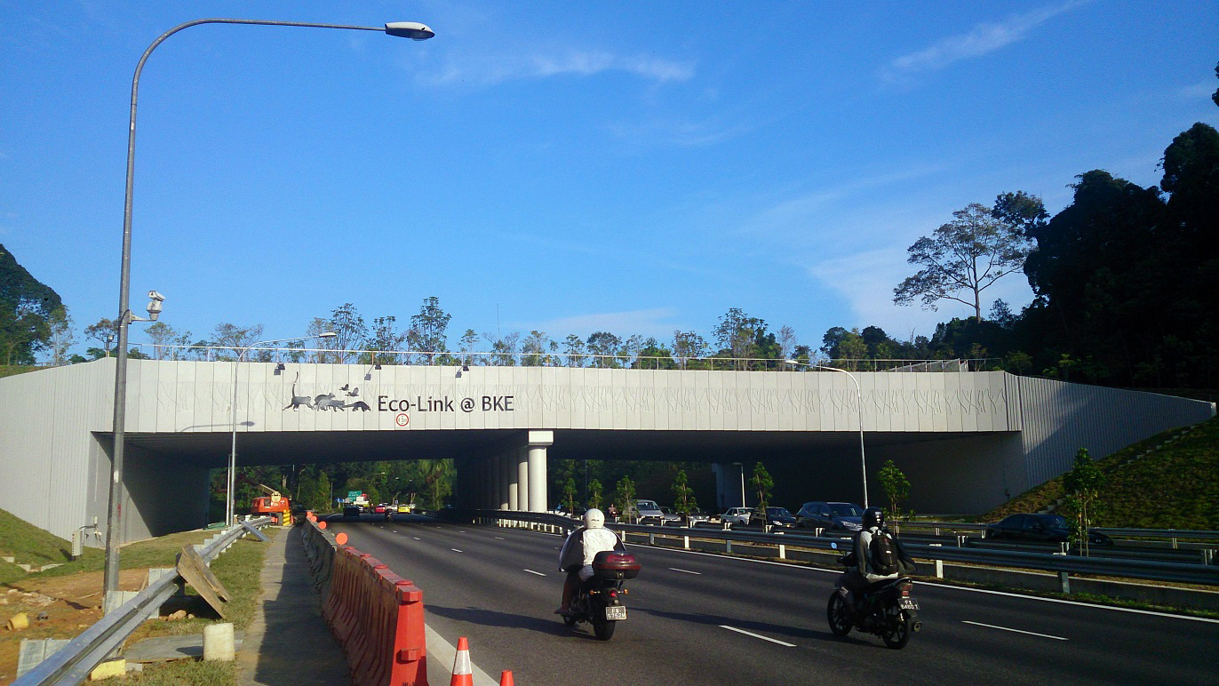 The Eco-Link@BKE just after completion of the planting in September 2013