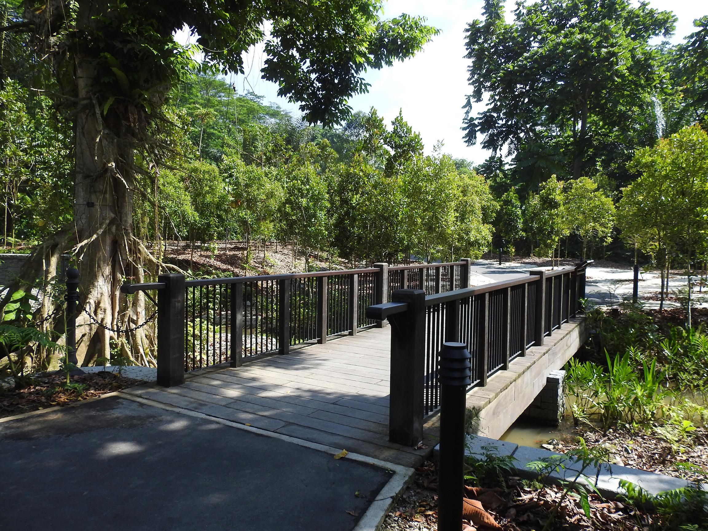 Canarium Pond Bridge