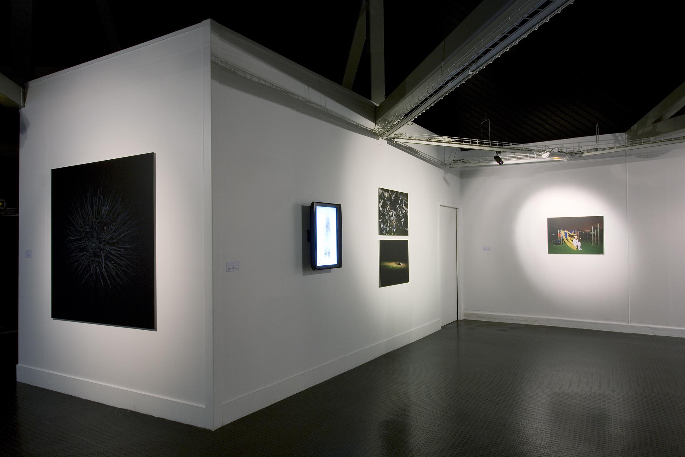 Truc-Anh_2010_Galerie-Le-Lieu_Pan-Peter_04