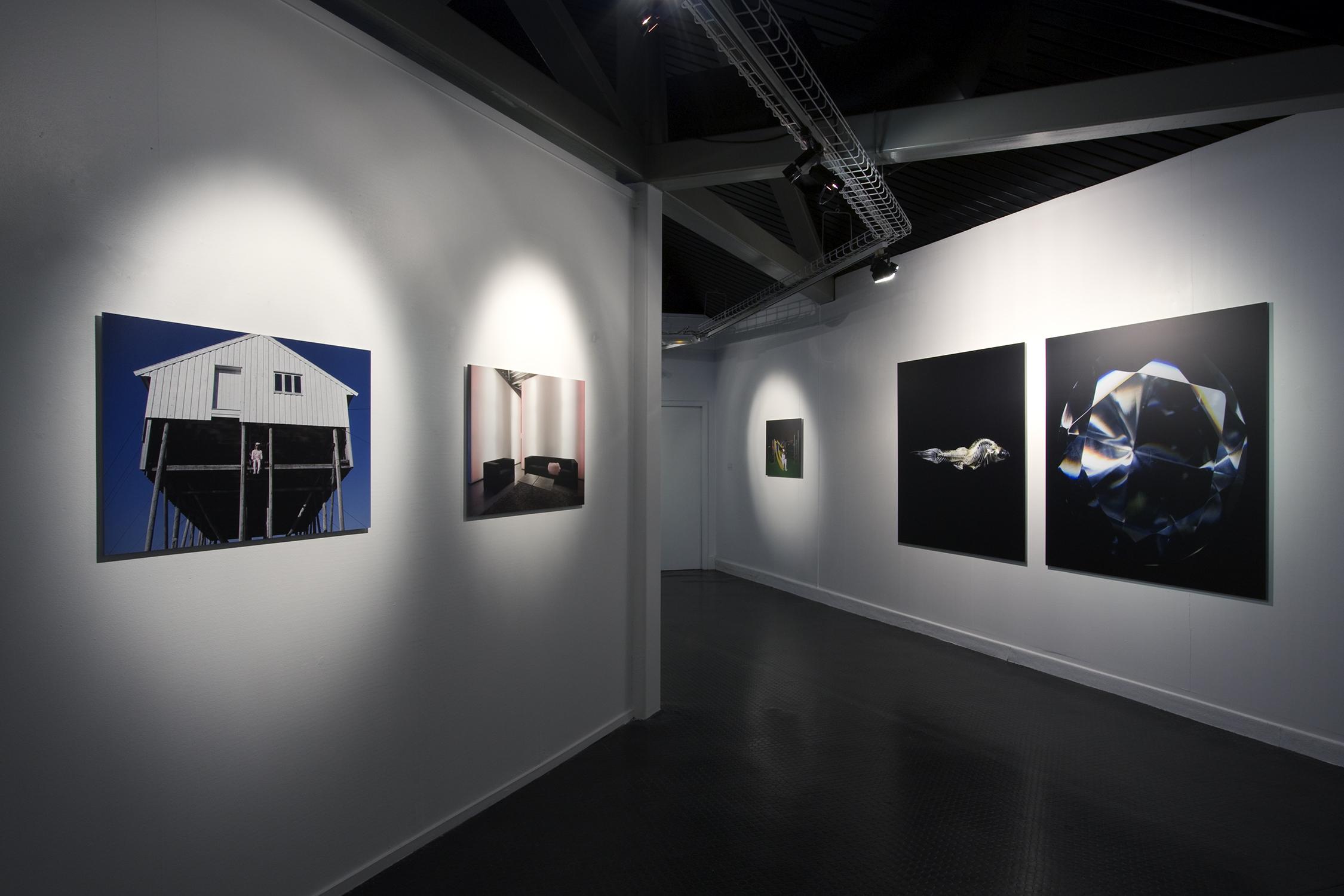Truc-Anh_2010_Galerie-Le-Lieu_Pan-Peter_06