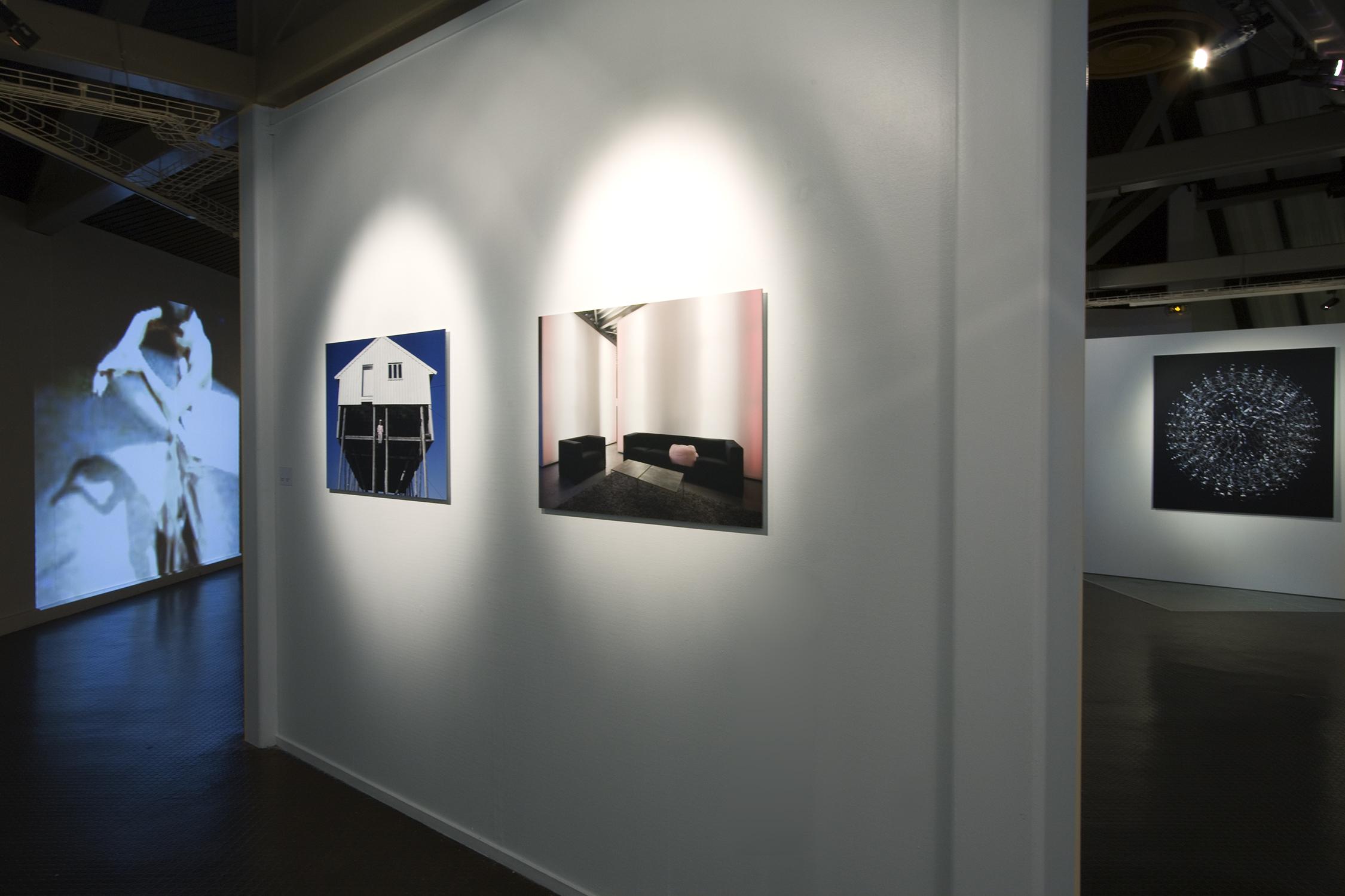 Truc-Anh_2010_Galerie-Le-Lieu_Pan-Peter_08