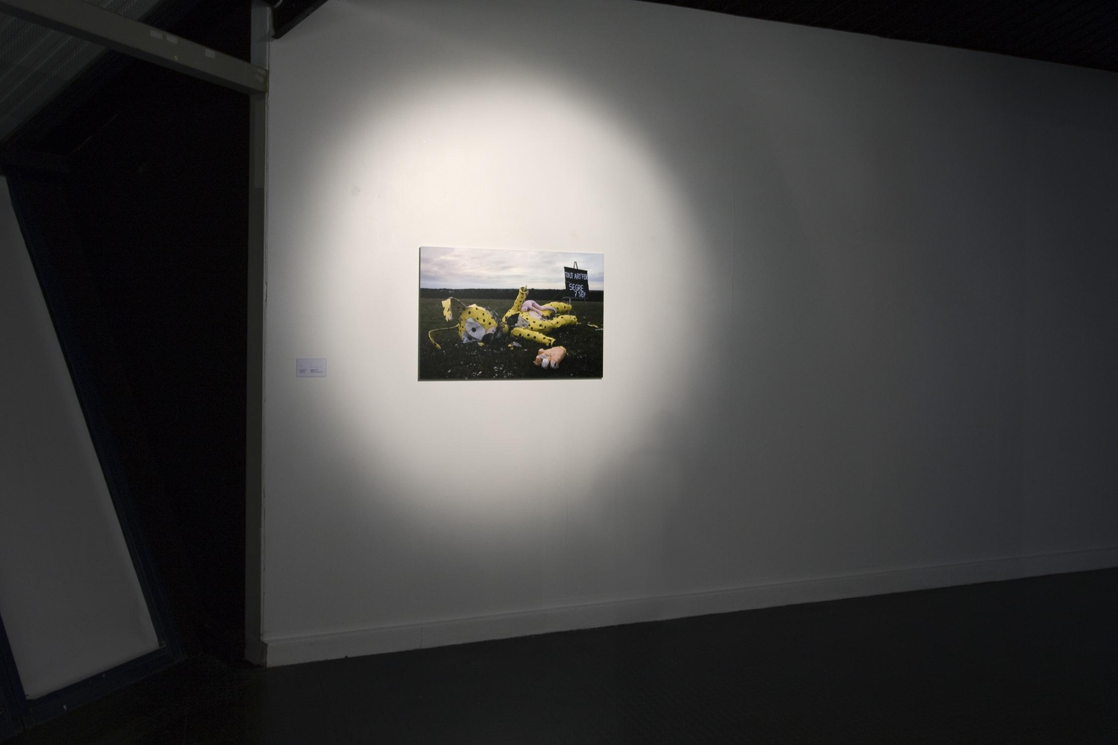 Truc-Anh_2010_Galerie-Le-Lieu_Pan-Peter_12