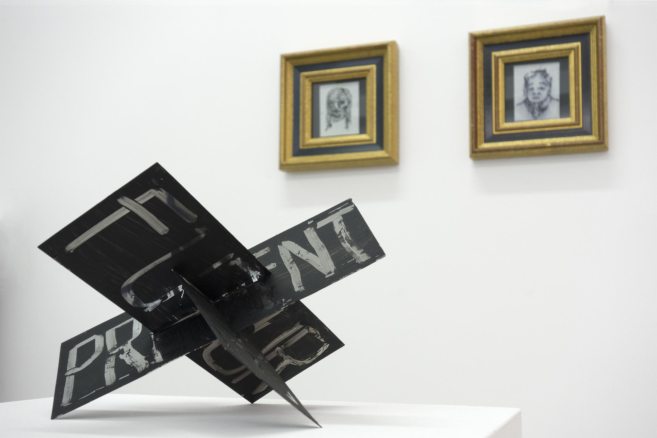 Truc-Anh_2013_Galerie-Sator_JEP_06