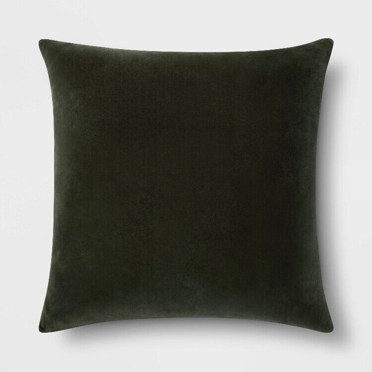- Transitioning your space to fall? This is the perfect pillow (that will also work through winter-win!)Find it here.