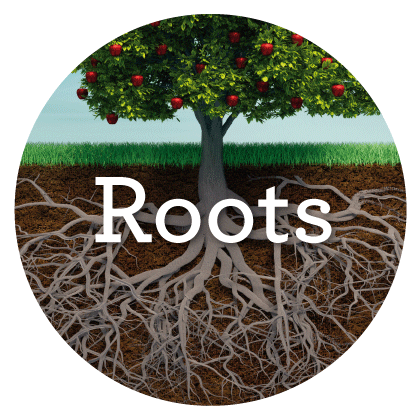 Roots+pic.png