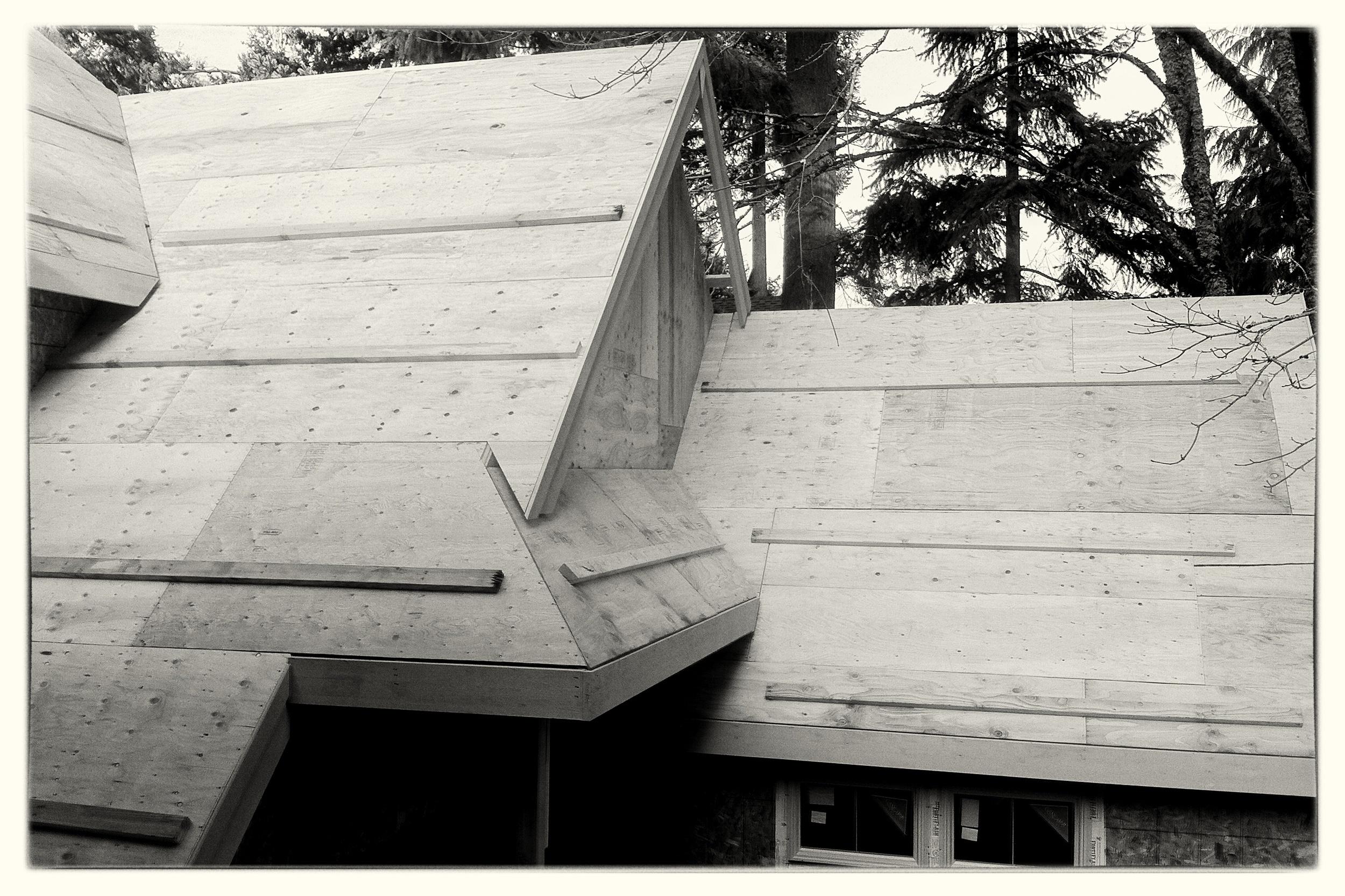 Roof Framing - Lake Oswego