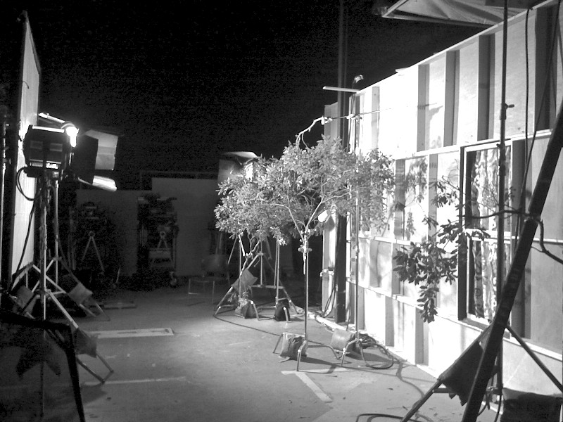 (Lou'sB&B) Ext. Set Lighting.JPG