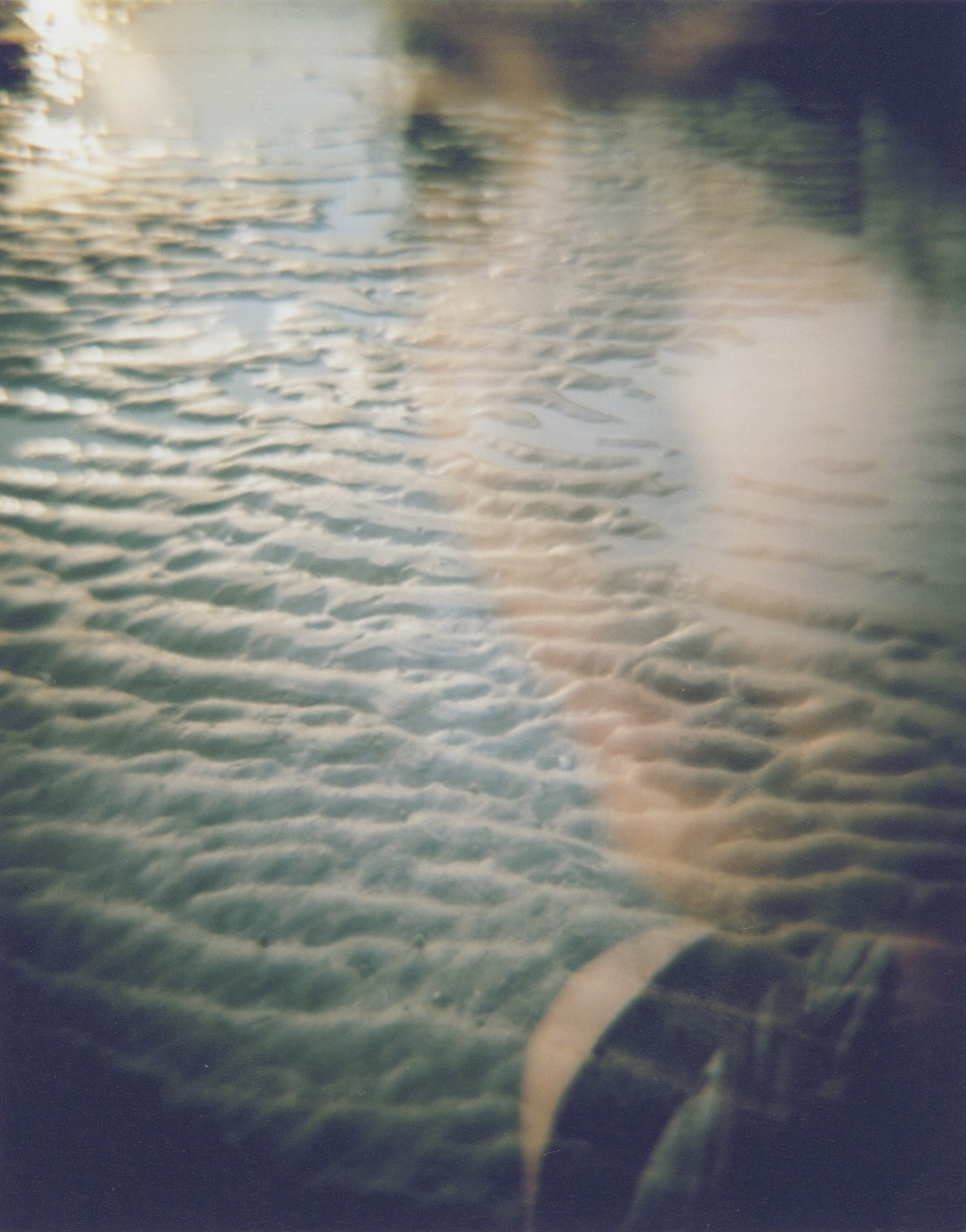 one from Diana f+