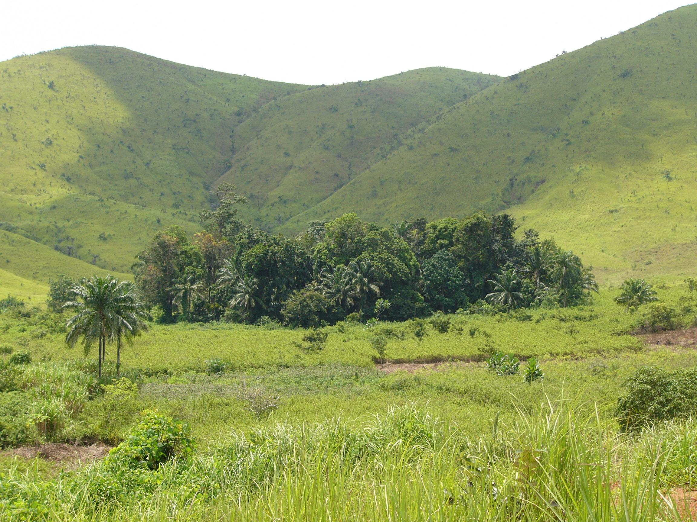International Services - Western Niari Polymetallic Survey, Republic of Congo (2010)