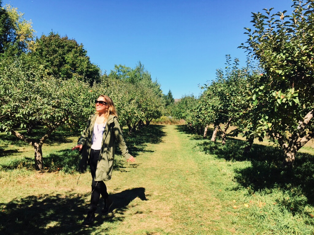 Walking through the heritage apple orchard at the Markham Applefest.