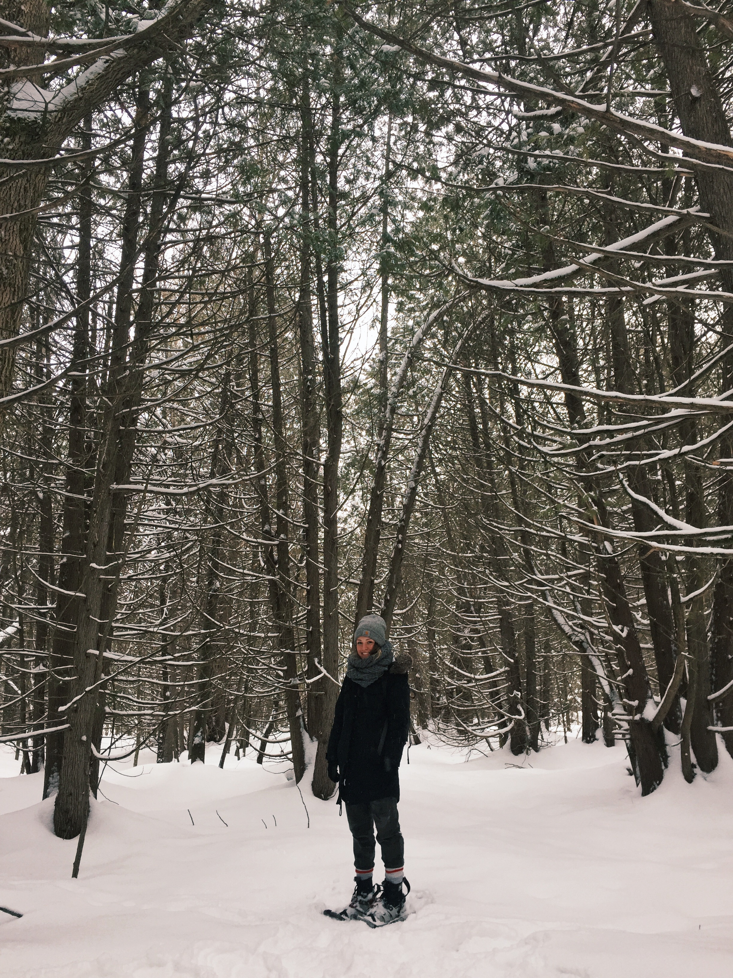 Snowshoeing and   dogsleddin g in Moonstone, Ontario.
