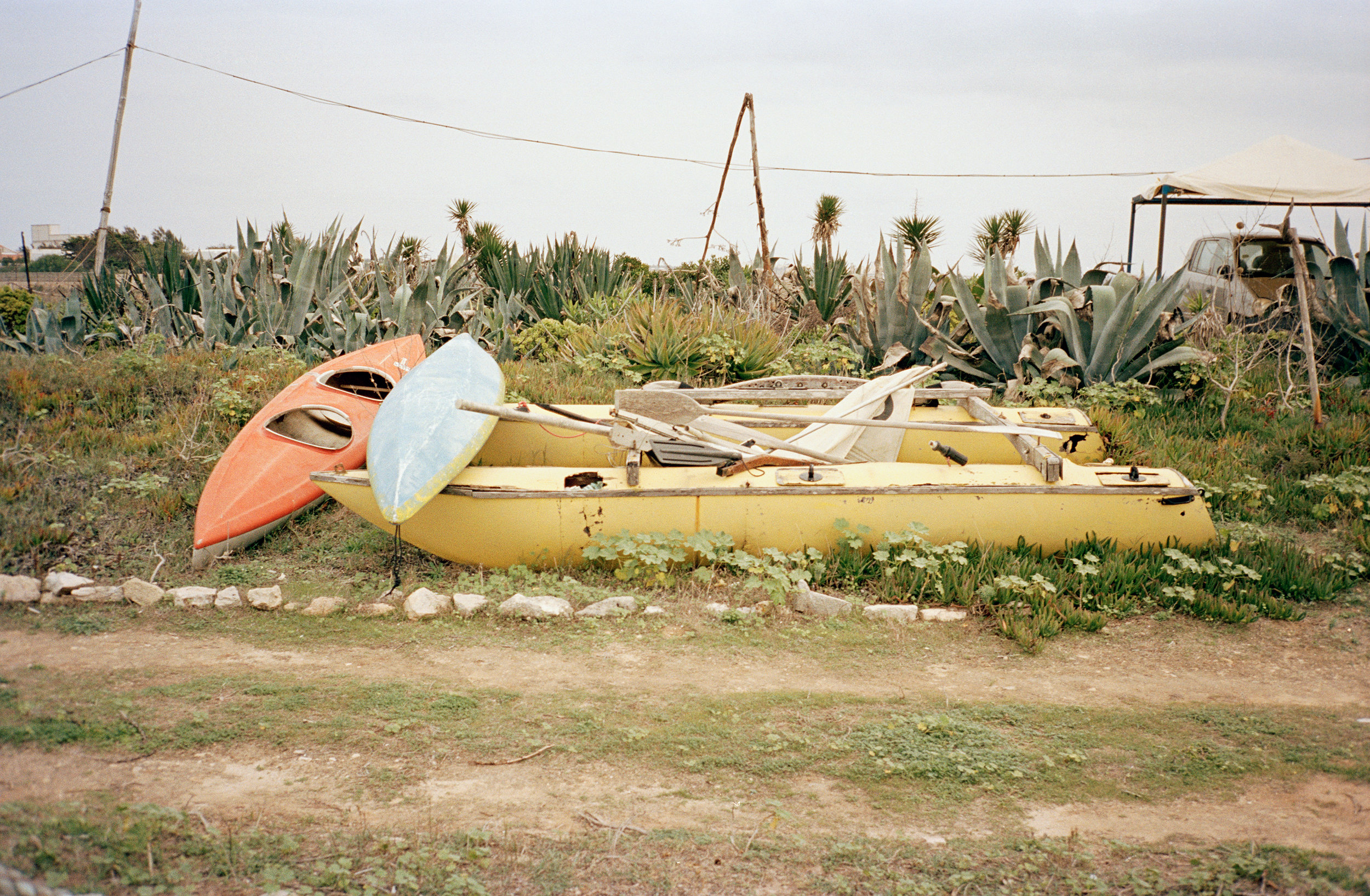 Two Canoes, 2011