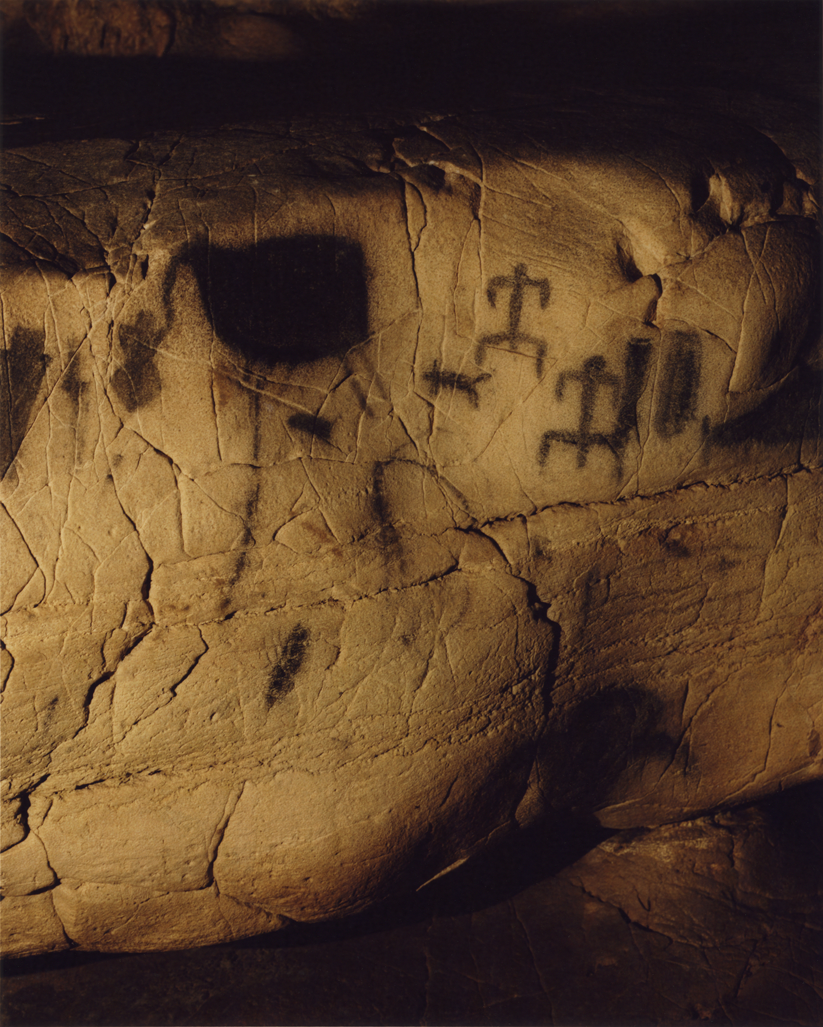 Upper Paleolithic Cave Painting I, 2014