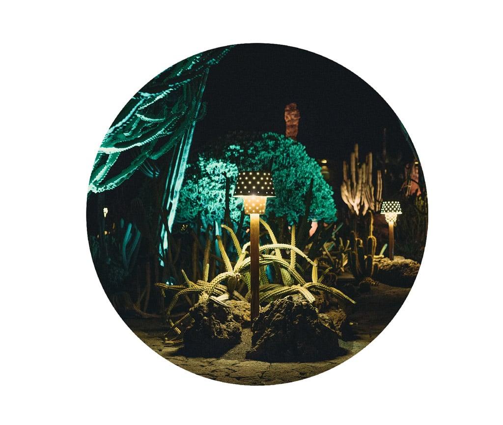 001-boda-diseño-jardin-cactus.jpg