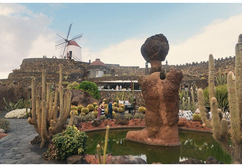 020-boda-diseño-jardin-cactus.jpg