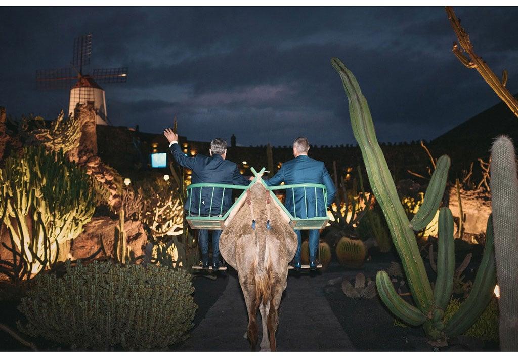 051-boda-diseño-jardin-cactus.jpg