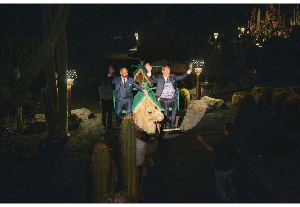 052-boda-diseño-jardin-cactus.jpg