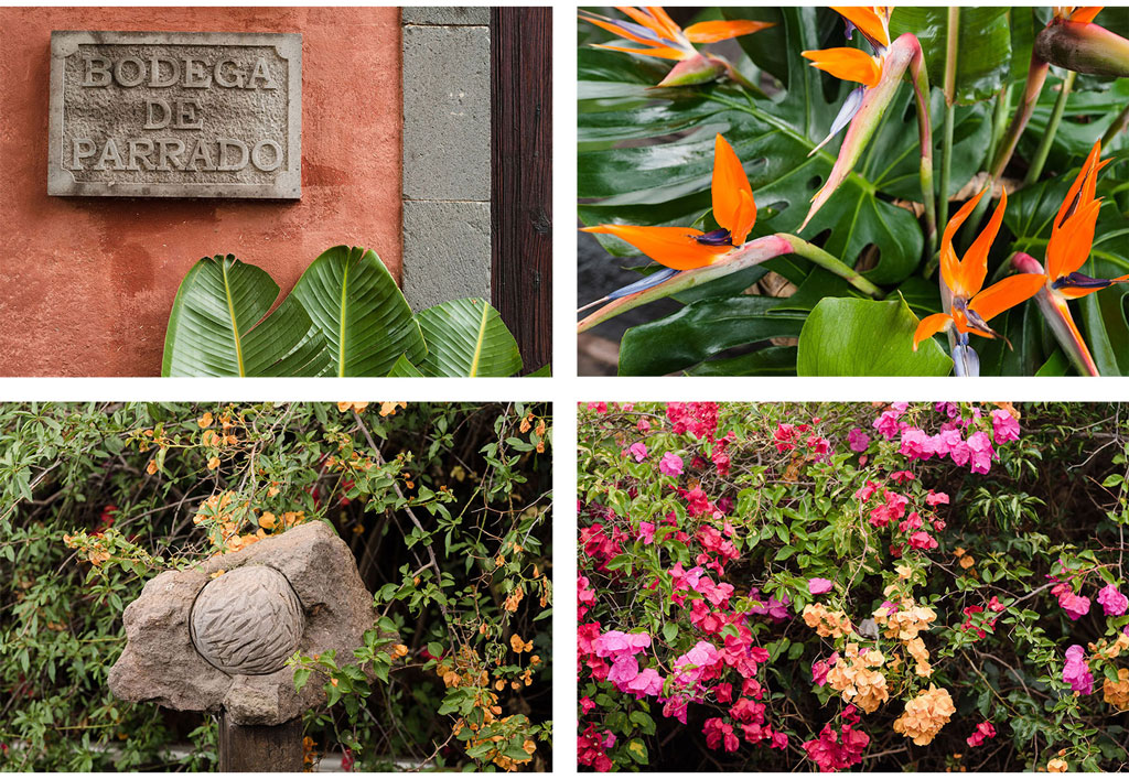 Boda-Gran-Canaria-021.jpg