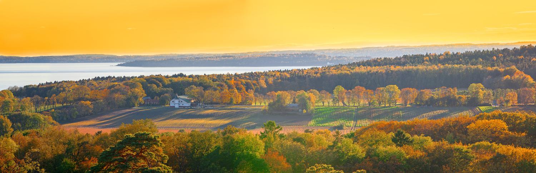 Høstsol over Jeløy i Moss. Legg merke til den lange alleen som leder frem til Alby Gård og Galleri F15.
