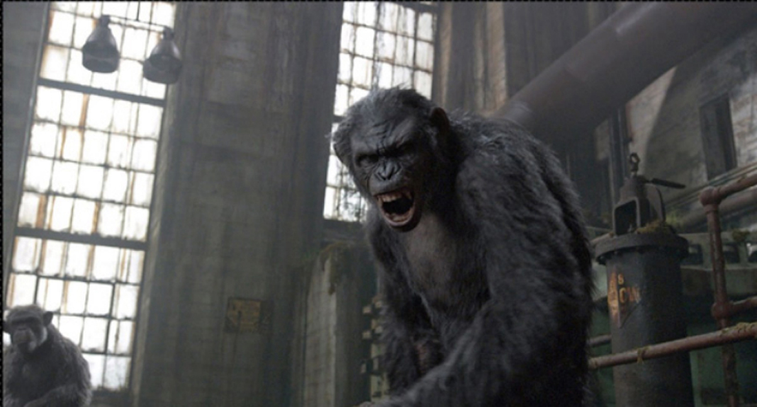 dawn-of-the-planet-of-the-apes-ew-21.jpg