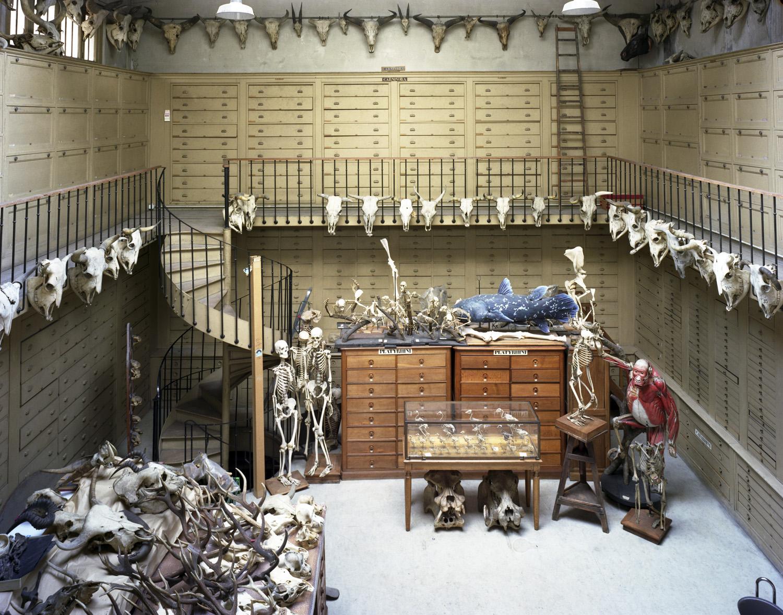 2004_collectionroom.jpg