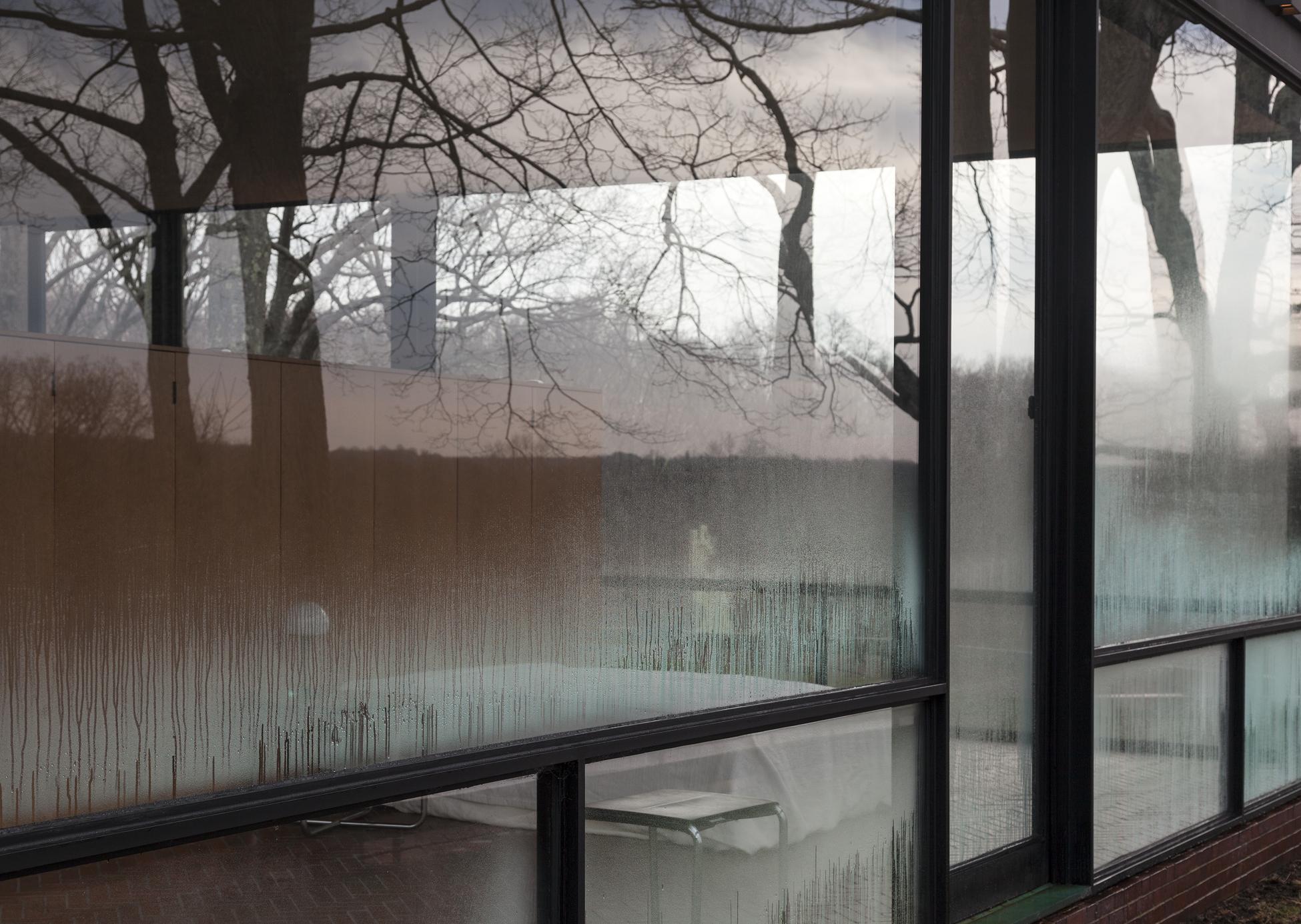 GlassHouse_Fog_042.jpg