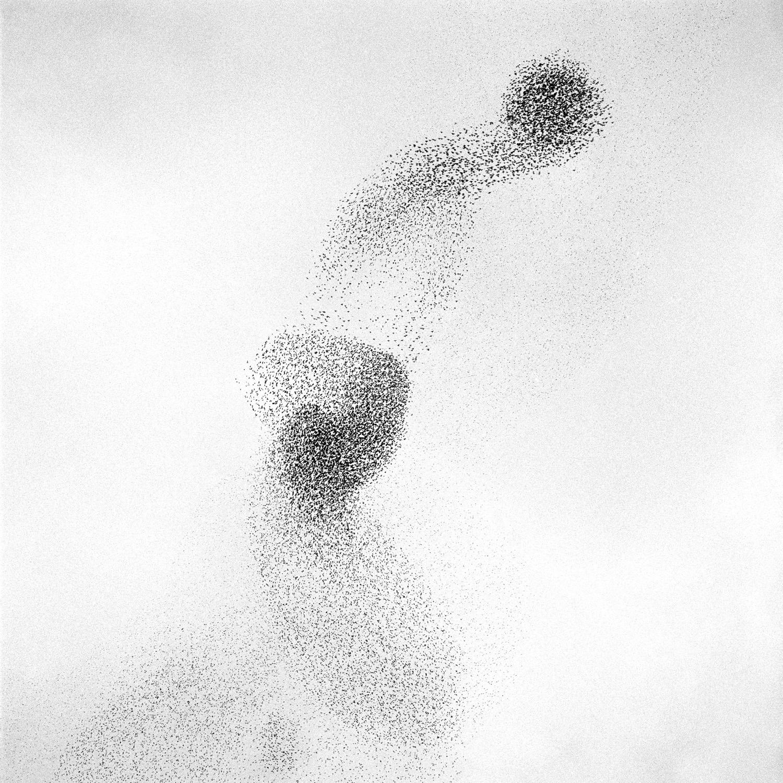 Murmur #8, 2005