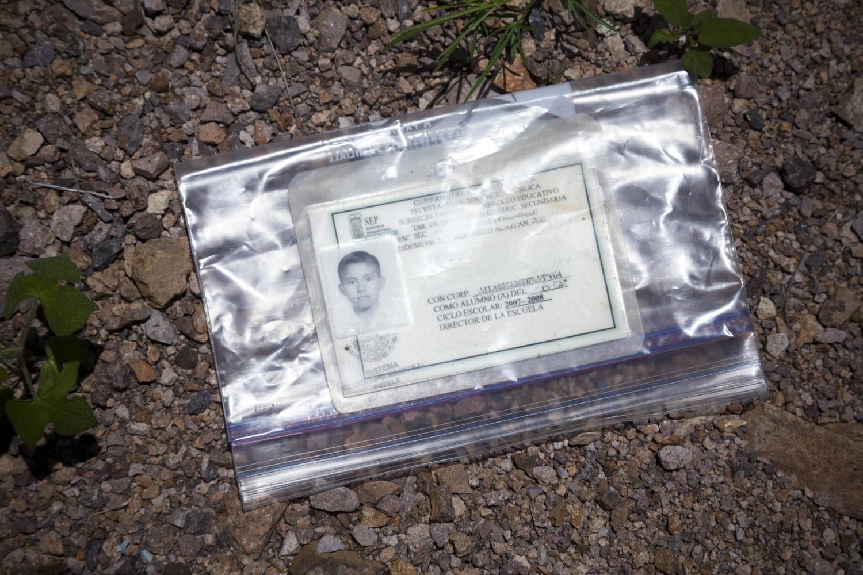 Migrant, I.D. from Debris Field, 2012