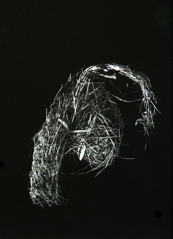 Necouri Weaver, 2000