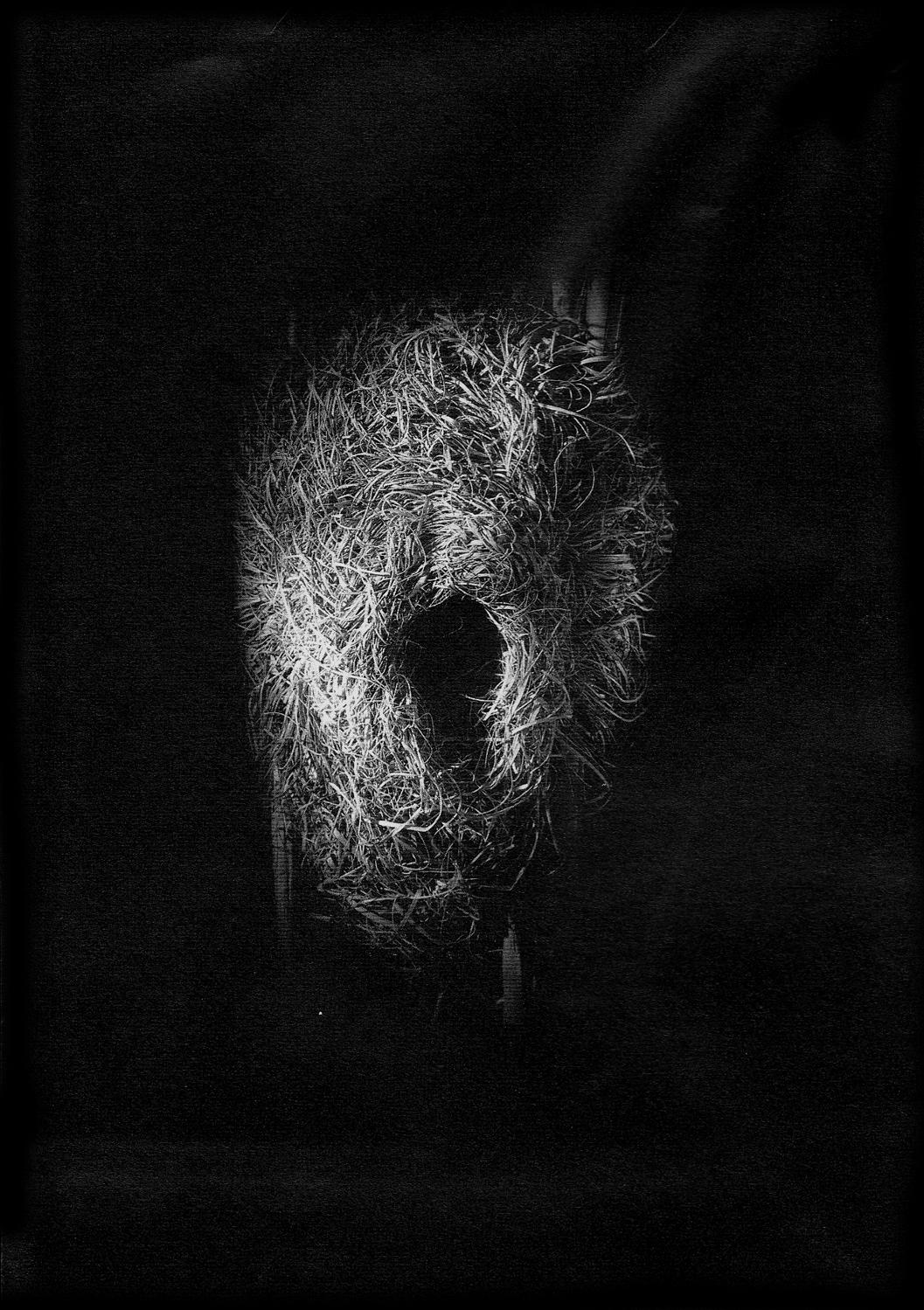Nest #11, 2000