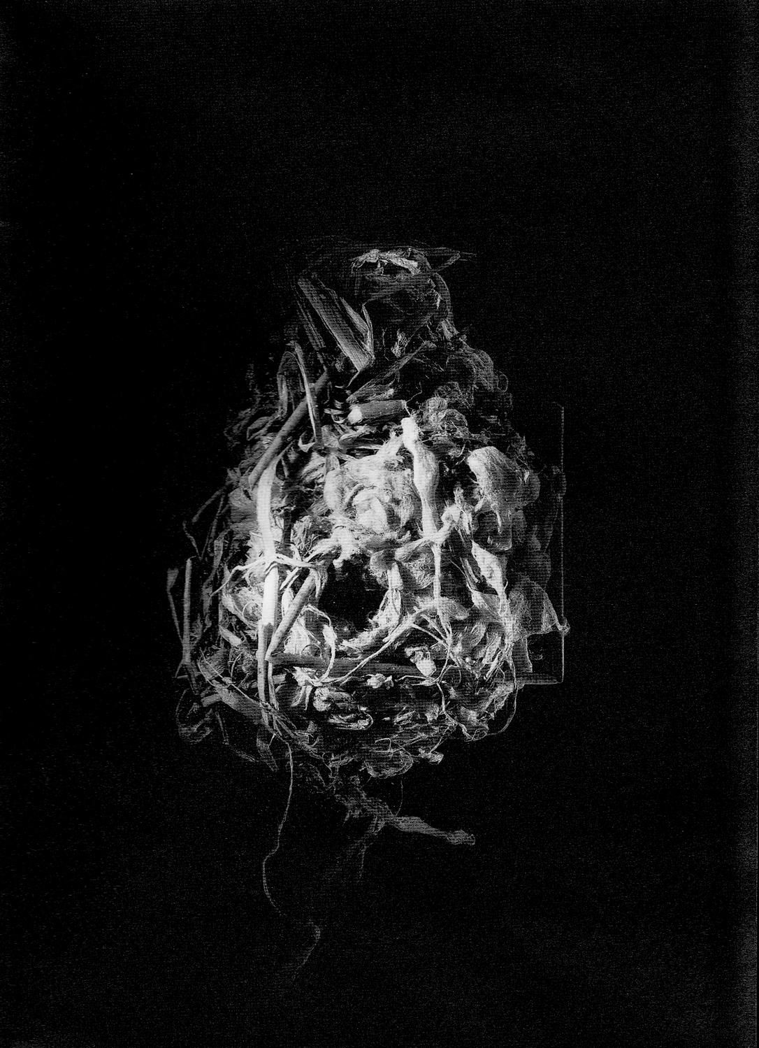 Nest #4, 2000