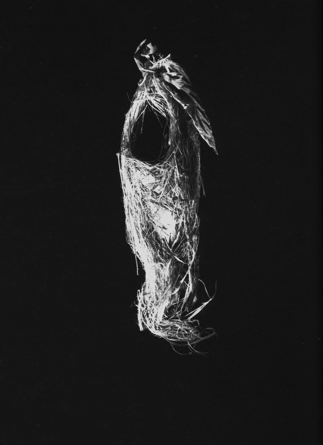 Nest #15, 2000