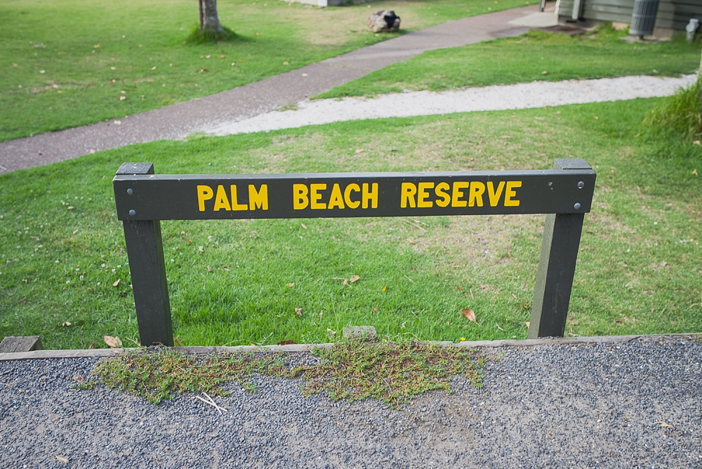 Palm-Beach-Waiheke-Wedding0037.jpg