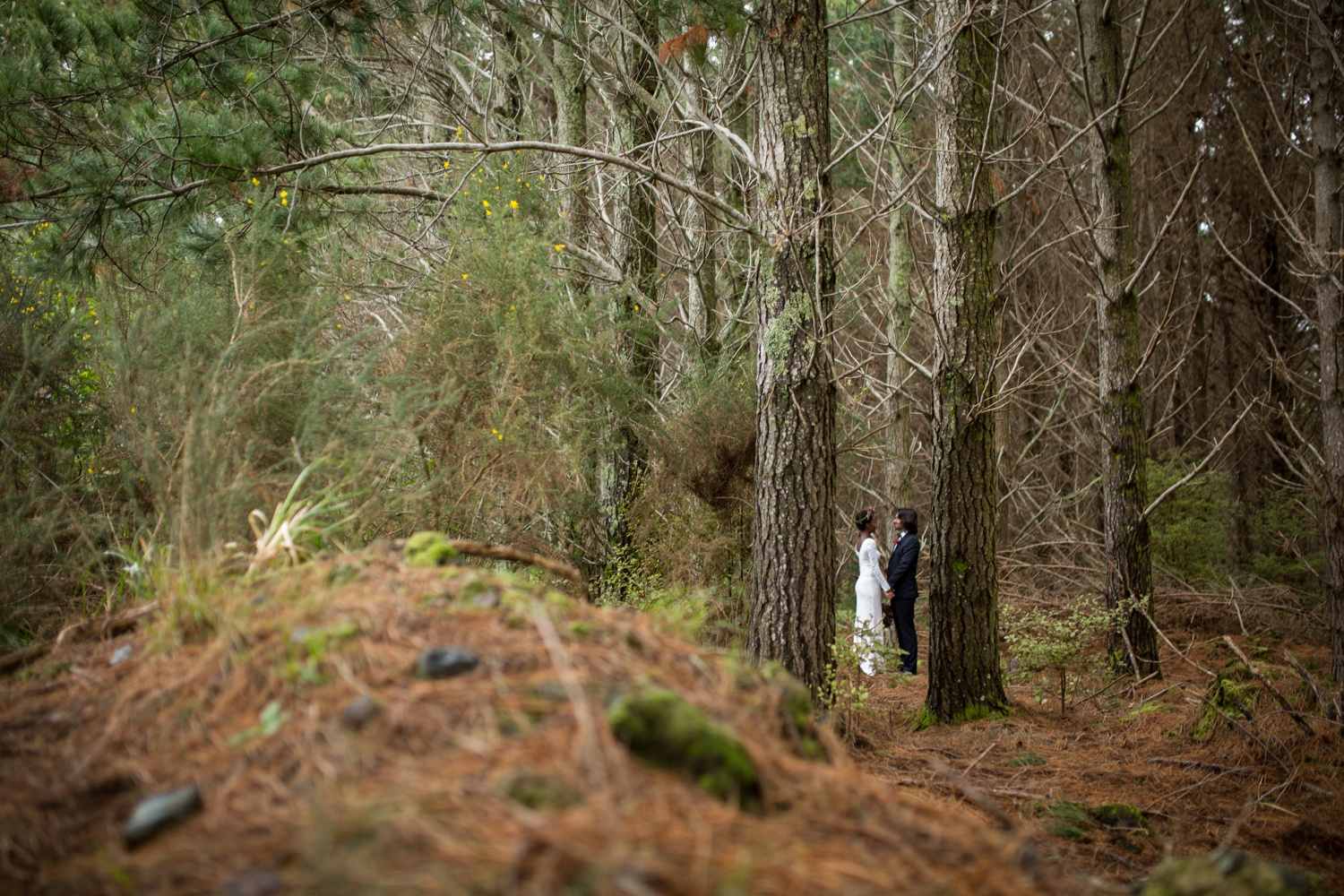 035_aucklandforestwedding.jpg