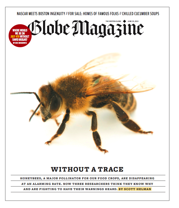 The Beekepers  | How a Harvard scientist, sixth-generation bee whisperer, and retired entrepreneur teamed up to rescue an embattled insect and save the American food supply. (June 2013)