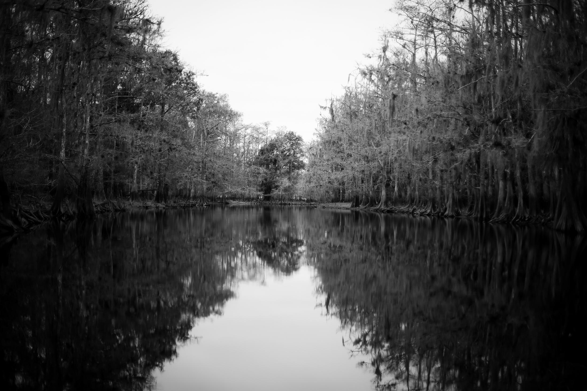 fisheating creek-131.jpg