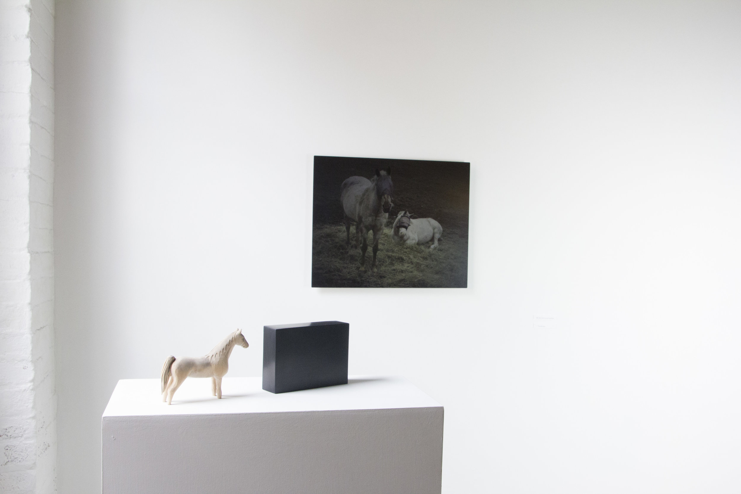 Helen_Hawley_google__art_lit_lab_Chele_Isaac_installation_horses.JPG
